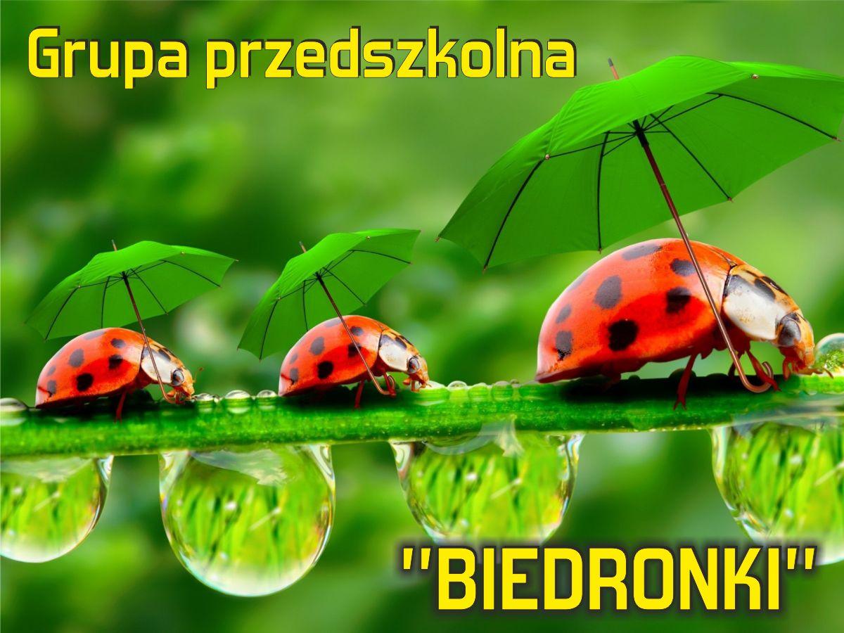 """Grupa przedszkolna """"Biedronki"""""""