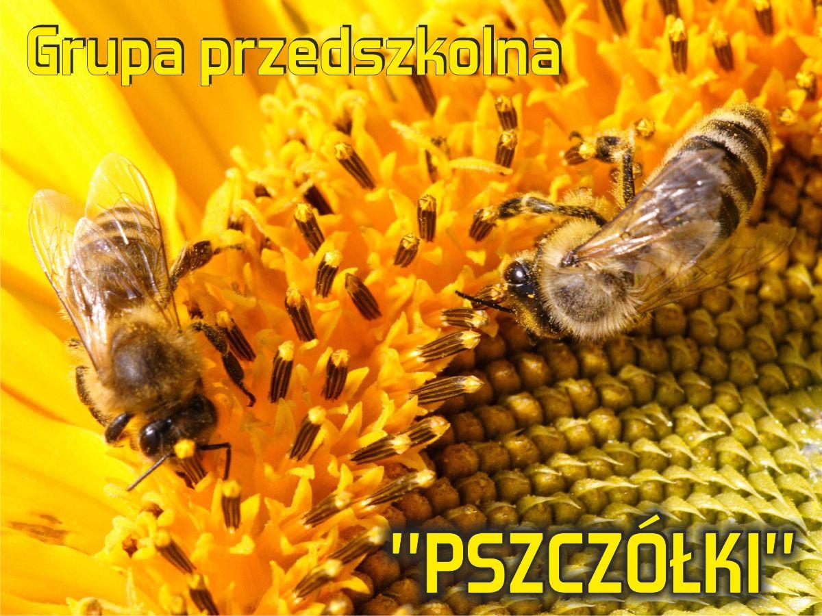 """Grupa przedszkolna """"Pszczółki"""""""