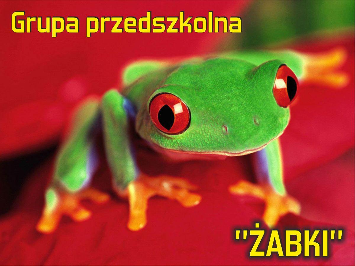 """Grupa przedszkolna """"Żabki"""""""