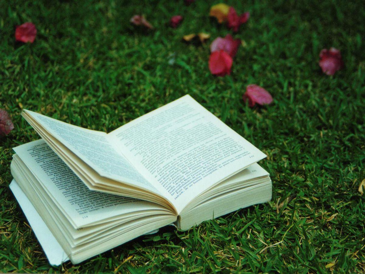 Książki miesiąca: Sierpień