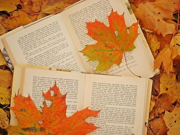 Książki miesiąca: Październik