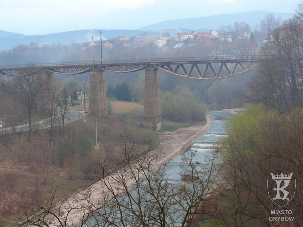 Widok z Caritasu na rzekę Białą Tarnowską, fot. Piotr Piechnik (2010)