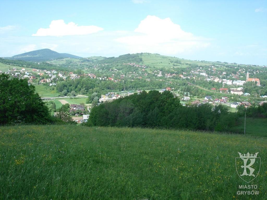 Panorama grybowskiej doliny w kierunku góry Rosochatka, fot. Katarzyna Chronowska (2013)