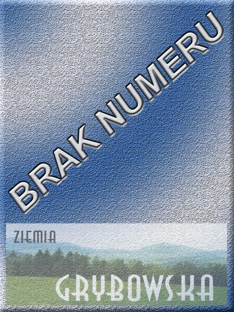 Ziemia Grybowska - II edycja (Brak numeru)