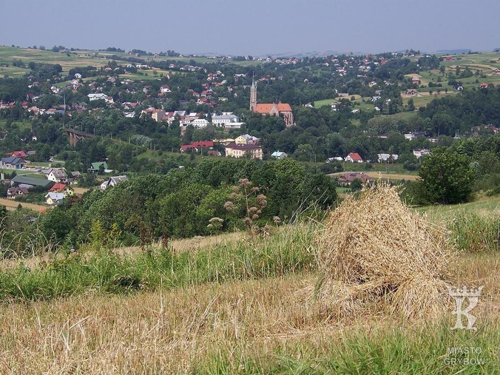 Wizytówka Grybowa: Panorama Grybowa, fot. Barbara Gomułka (2009)