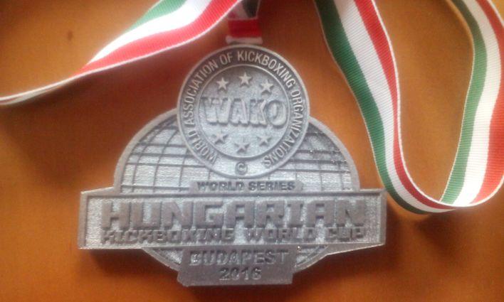 2016-05-13/15: Puchar Świata w kickboxingu w Budapeszcie
