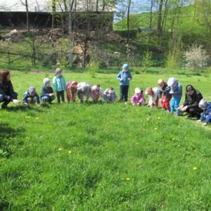 Przedszkolny ogród