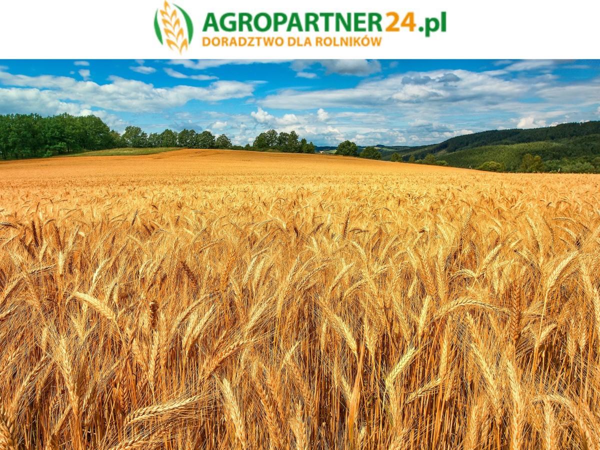 Logo Agropartner24.pl
