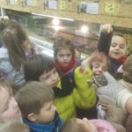 2017-01-09/10: Zielona godzina w Mini Zoo