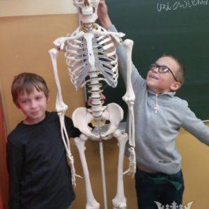 """Kółko przyrodnicze nr 2 w ramach projektu """"Nowoczesna Szkoła"""""""