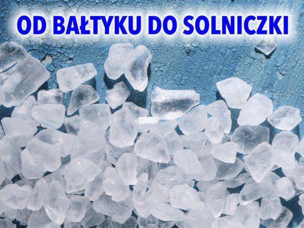 """VI Konkurs Przyrodniczy """"Od Bałtyku do solniczki"""""""