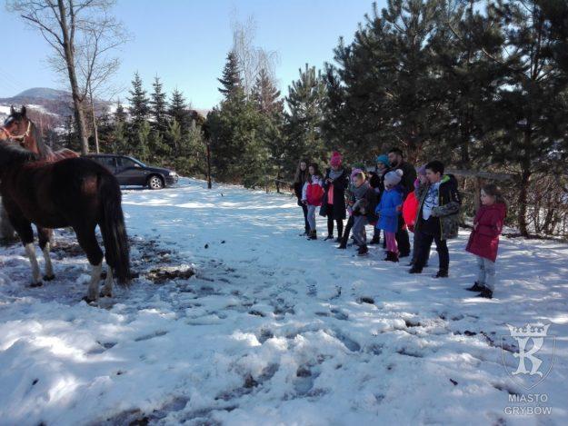 """styczeń-marzec 2018: Zajęcia koła przyrodniczego """"Zwierzęta zimą"""""""