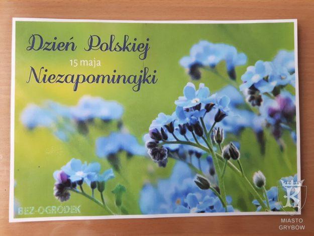 2018-05-15: Dzień Polskiej Niezapominajki