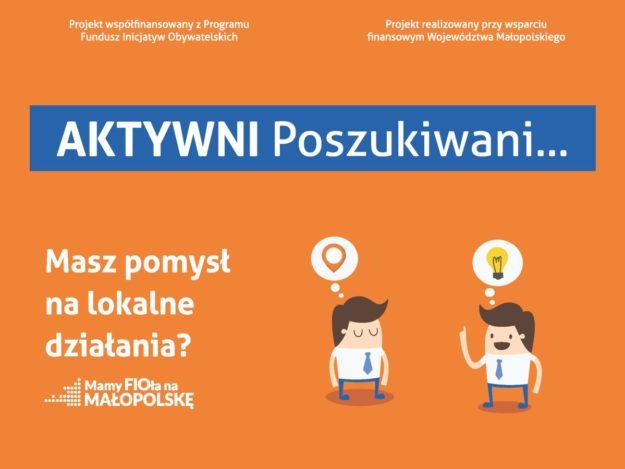 """Projekt """"FIO - Małopolska Lokalnie. Południe"""""""