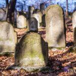 2019-11-03: Odsłonięcie pomnika na cmentarzu żydowskim w Grybowie
