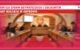 Komisja Spraw Obywatelskich i Socjalnych Rady Miejskiej w Grybowie
