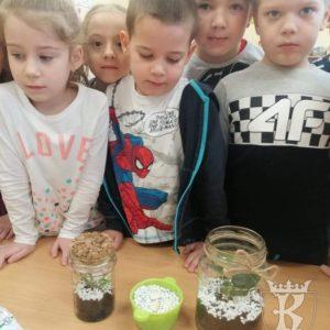 2020-03: Przedszkolny kącik przyrody