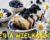 Potrawy wielkanocne na wynos