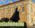 #ZostańwDomu: Wirtualna wycieczka do muzeum Jana Pawła II