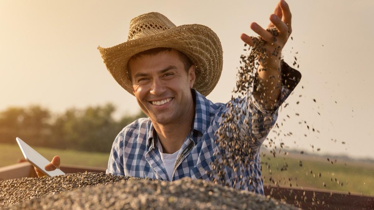 Dla rolników: w ARiMR od kilkunastu tysięcy do nawet miliona złotych